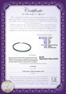 product certificate: B-AA-758-N-Akoy