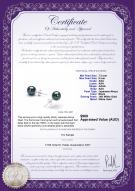 product certificate: B-AAA-758-E-Akoy