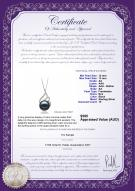 product certificate: FW-B-AA-1213-P-Tracy