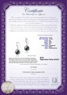 product certificate: FW-B-AA-910-E-Holly
