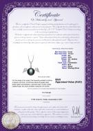 product certificate: FW-B-AA-910-P-Angel