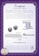 product certificate: FW-B-AAAA-78-E-Leslie
