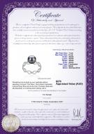 product certificate: FW-B-AAAA-78-R-Wave