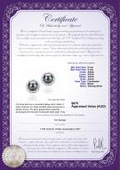 product certificate: FW-B-AAAA-89-E-Bessie
