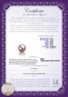 product certificate: FW-L-AAAA-910-L1