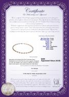 product certificate: FW-P-A-67-N-Paige