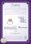 product certificate: FW-P-AA-910-R-Sadie