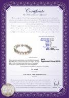 product certificate: FW-W-A-89-B-Kaitlyn