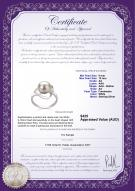 product certificate: FW-W-AA-910-R-Sadie