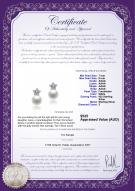 product certificate: FW-W-AAAA-78-E-Star