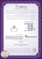 product certificate: FW-W-AAAA-78-R-Forever