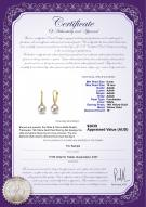 product certificate: FW-W-AAAA-910-E-Sparkle