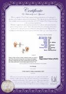 product certificate: P-AA-67-E