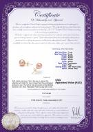 product certificate: P-AAAA-78-E