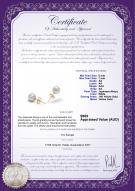 product certificate: W-AA-67-E-Akoy