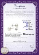 product certificate: W-AA-885-E-SS