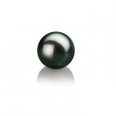 8-9mm AAA Quality Japanese Akoya Loose Pearl in Black