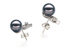 7-8mm AA Quality Japanese Akoya Cultured Pearl Earring Pair in Melissa Black