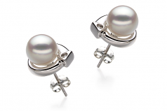 7-8mm AA Quality Japanese Akoya Cultured Pearl Earring Pair in Angelina White