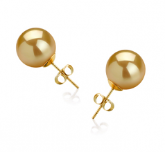 10-11mm AAA Quality South Sea Cultured Pearl Earring Pair in Gold