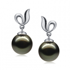 9-10mm AAA Quality Tahitian Cultured Pearl Earring Pair in Jeannie Black