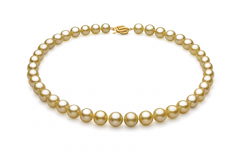9-11.8mm AAA Quality South Sea Cultured Pearl Necklace in Gold