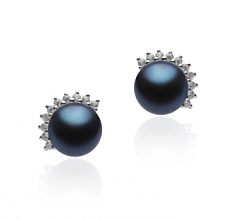 7-8mm AA Quality Freshwater Cultured Pearl Earring Pair in Louisa Black