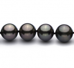 9.2-10.9mm AAA Quality Tahitian Cultured Pearl Necklace in Black