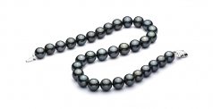 12-12.9mm AAA Quality Tahitian Cultured Pearl Necklace in Black