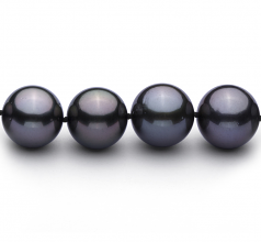 12-13.1mm AAA Quality Tahitian Cultured Pearl Necklace in Black