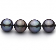 11.1-12.9mm AAA Quality Tahitian Cultured Pearl Necklace in Multicolour