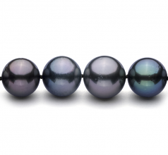 11.1-14.6mm AA+ Quality Tahitian Cultured Pearl Necklace in Multicolour