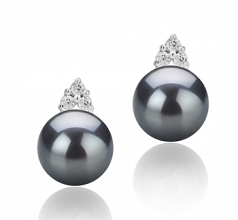 8-9mm AAAA Quality Freshwater Cultured Pearl Earring Pair in Evelyn Black
