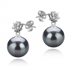 8-9mm AAAA Quality Freshwater Cultured Pearl Earring Pair in Wilma Black