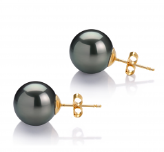 11-12mm AAA Quality Tahitian Cultured Pearl Earring Pair in Black