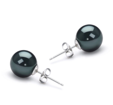 8.5-9mm AAA Quality Japanese Akoya Cultured Pearl Earring Pair in Black