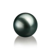 12-13mm AA Quality Tahitian Loose Pearl in Black