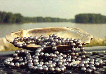 Freshwater Pearl History and Cultivation - Pearls Only
